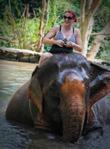 Enhanced Elephants-12