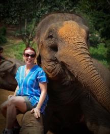 Enhanced Elephants-7